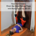 Yoga Swing on Your Door DVD